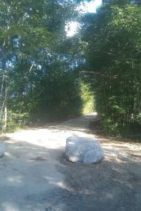 Warner Rail Trail entrance at Bagley Field