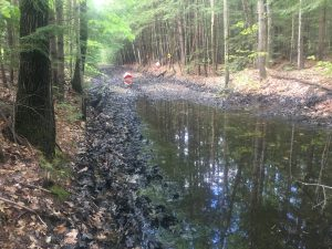 Stevens Rail Trail wet section May 25, 2019